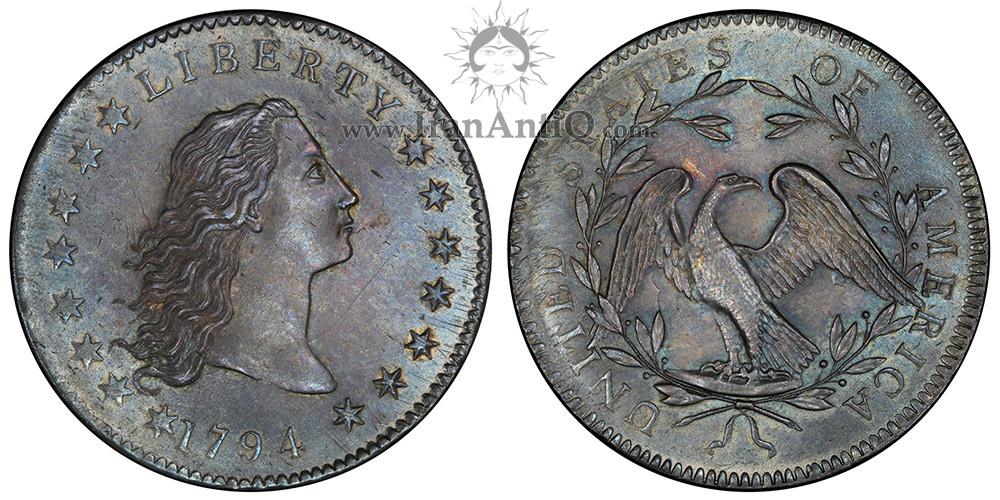 سکه یک دلار موی افشان - Flowing Hair One Dollar